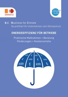 B4C: Energieeffizienz für Betriebe (Cover)